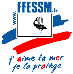 logo-ffessm